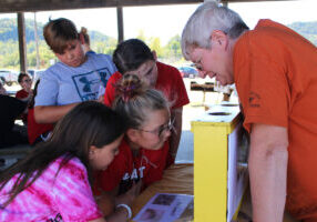 Washington Lands Elementary students search for the queen bee.
